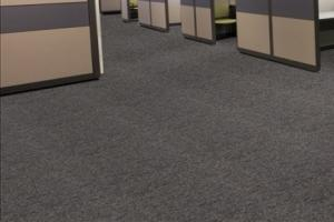 Office Carpet