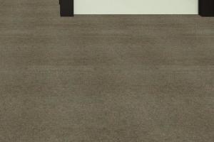 Indoor Outdoor Carpet 2808