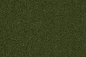Indoor Outdoor Carpet / 2851