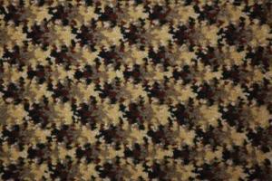 Hospitality Carpet / 2841