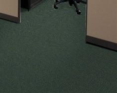Indoor Outdoor Carpet / 3636