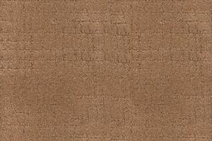 Hospitality Carpet 3859