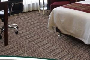 Hospitality Carpet 3849