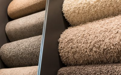 Which Carpet Is Right for Me?