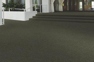 Indoor / Outdoor Carpet